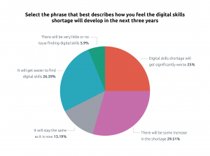 Pie chart illustrating digital skills shortage responses